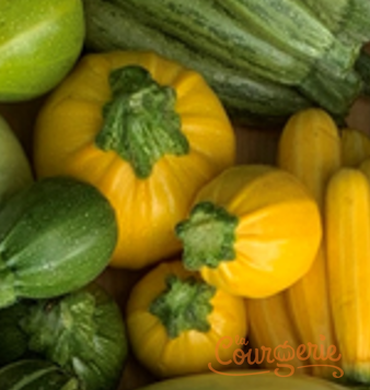 Courgettes rondinis jaunes