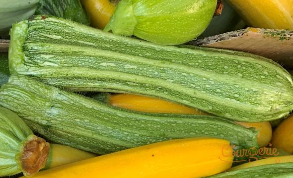 Courgettes zucchinis Romanesco