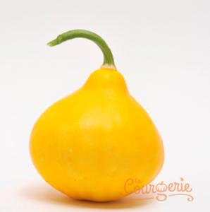 Courgette poire/citron/lemon