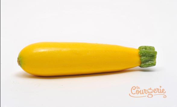 Courgette zucchini jaune
