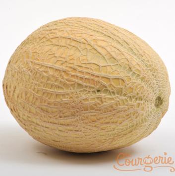 Melon brodé/Cantaloup